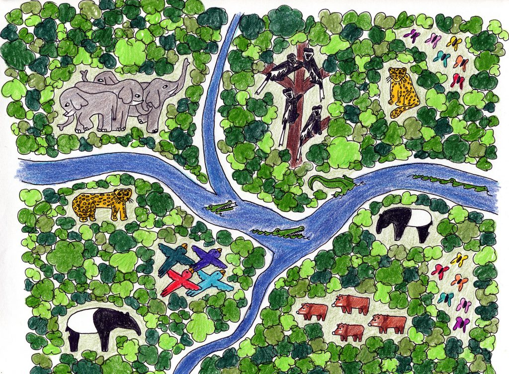 Child's drawing of forest full of animals including jaguars, elephants, and butterflies